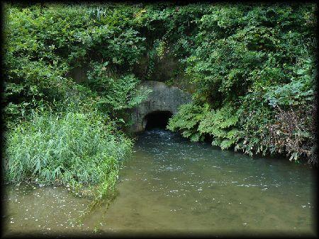 戸ノ口堰洞穴